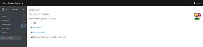 Screenshot_2019-03-18%20Syst%C3%A8me%20-%20ns7loc11%20nethservertest%20org(2)